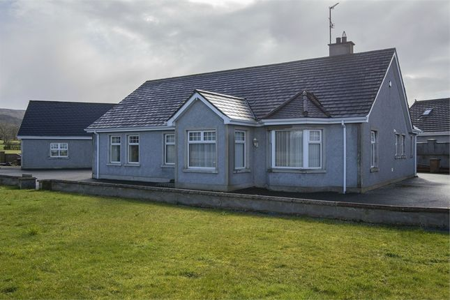 Thumbnail Detached bungalow for sale in Drumbane Road, Dungiven, Londonderry