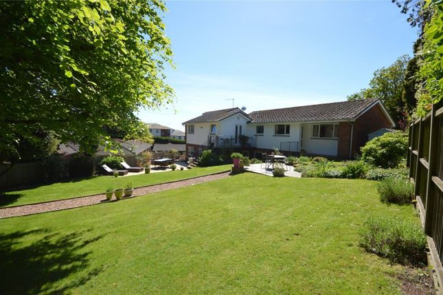 Thumbnail Detached house for sale in The Drive, Dawlish, Devon