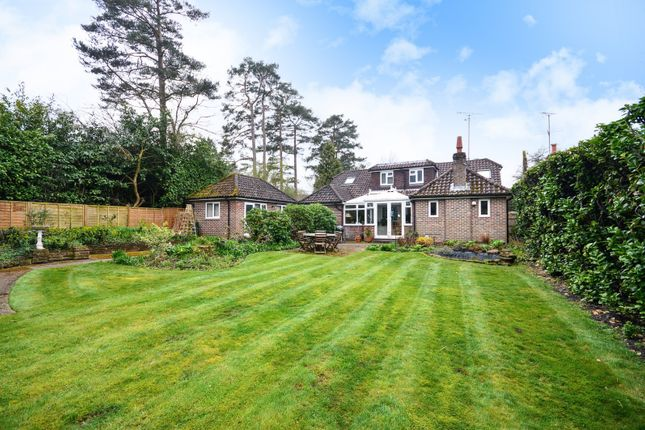 Thumbnail Detached house for sale in New Town Road, Storrington