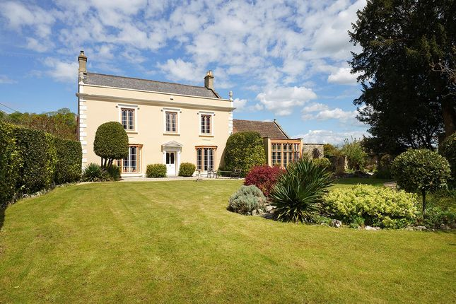 Thumbnail Detached house for sale in Wedmore, Somerset