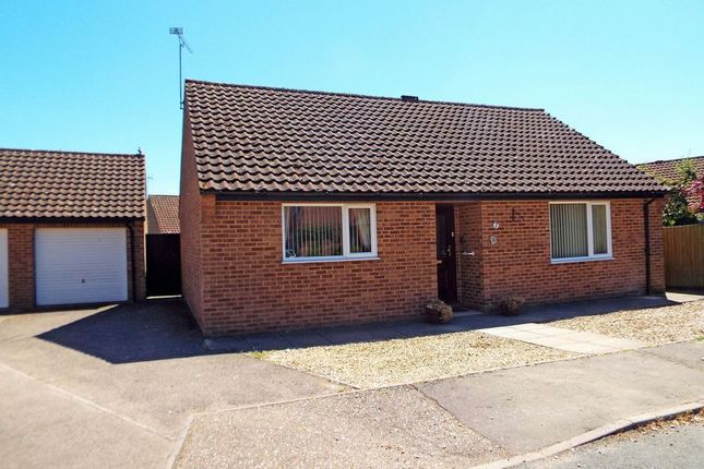Detached bungalow to rent in Salhouse Drive, Swaffham
