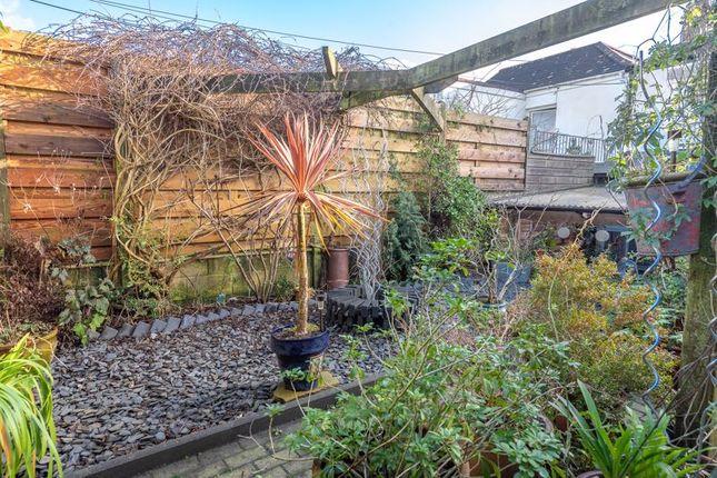 Garden of Edward Street, Tuckingmill, Camborne TR14