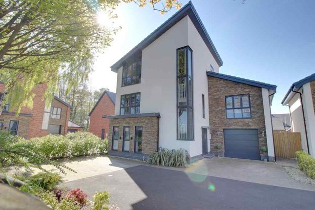 Thumbnail Detached house for sale in Bloomsbury Gardens, Mansfield