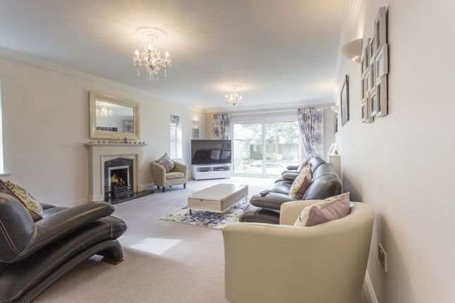 Thumbnail Detached house for sale in 2 The Paddocks, Setchey, Kings Lynn, Norfolk