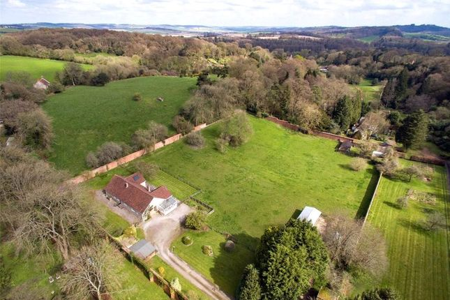 Thumbnail Detached house for sale in The Green, East Knoyle, Salisbury
