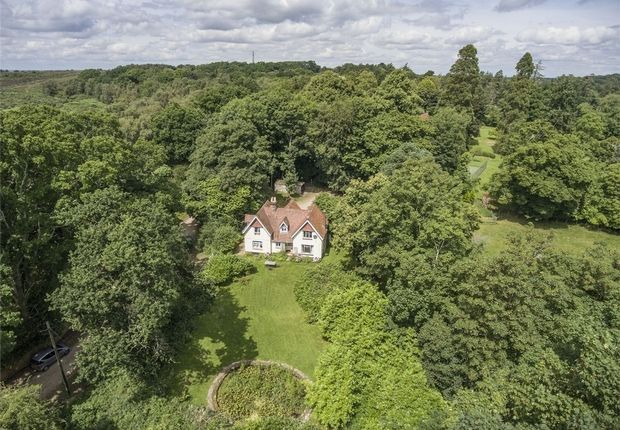 Thumbnail Detached house for sale in Coach Hill Lane, Burley, Ringwood