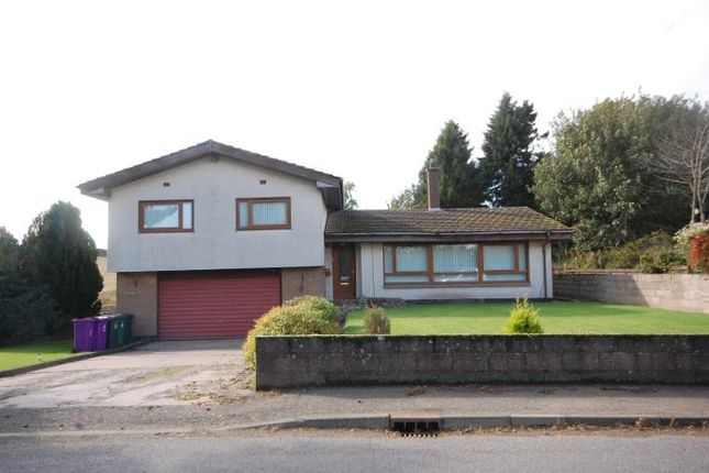 Thumbnail Detached house to rent in Newhouse, Roundyhill, Forfar