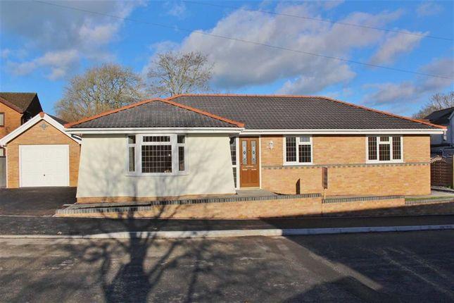 Thumbnail Detached bungalow for sale in Aberlash Road, Ammanford
