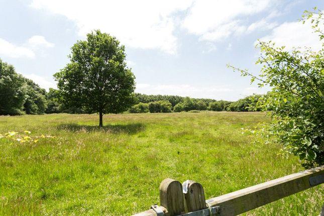 Picture No. 23 of Southfield Grange, Appleton Roebuck, York YO23
