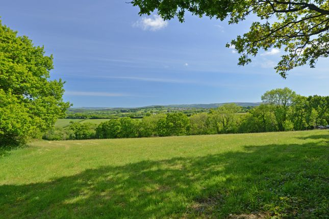 Thumbnail Land for sale in Cheriton Bishop, Exeter