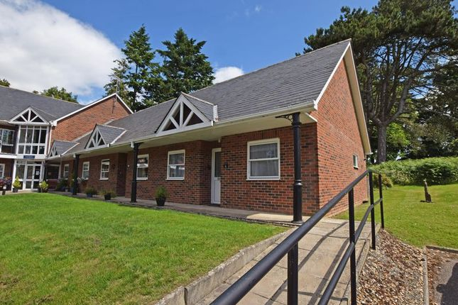 Thumbnail Bungalow to rent in Lymington Bottom, Four Marks, Alton