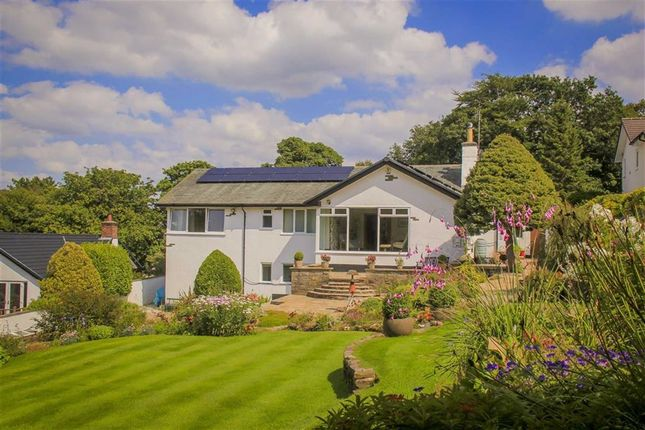 Thumbnail Detached house for sale in Snodworth Road, Langho, Blackburn