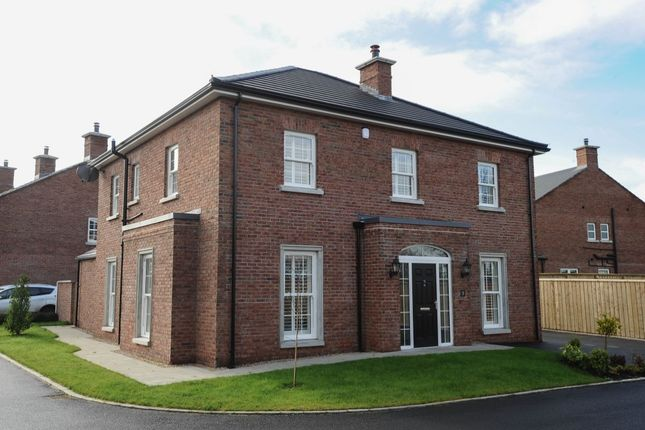Thumbnail Detached house for sale in Kings Oak Mews, Maze, Lisburn