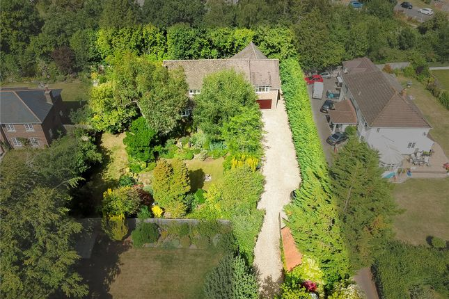 Thumbnail Detached house for sale in Milldown Road, Blandford Forum, Dorset