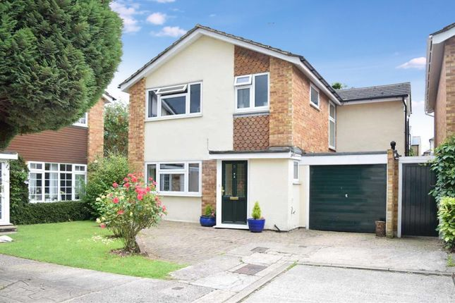 Thumbnail Detached house for sale in St. Michaels Road, Chelmsford
