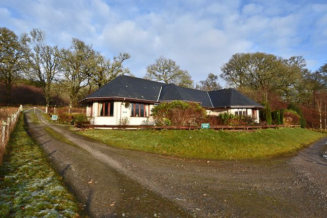 Thumbnail Detached bungalow for sale in Spean Bridge, Spean Bridge
