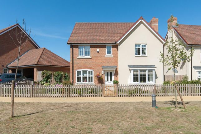 Thumbnail Detached house for sale in Holm Oak Walk, Sholden, Deal