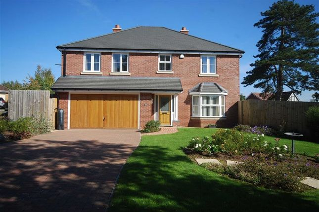 Thumbnail Detached house for sale in Belgravia Gardens, Hereford, Herefordshire