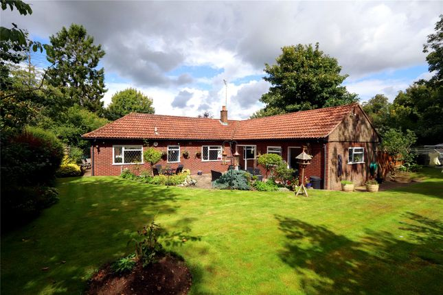Thumbnail Detached bungalow for sale in St. Lawrence Close, Abbots Langley