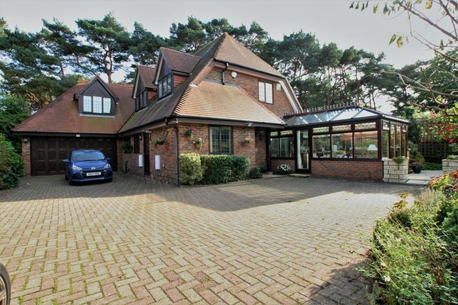 Thumbnail Detached House For Sale In Stokewood Road Winton Bournemouth