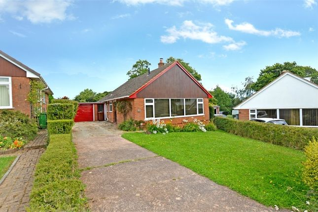 Thumbnail Detached bungalow to rent in Bindon Road, Exeter, Devon