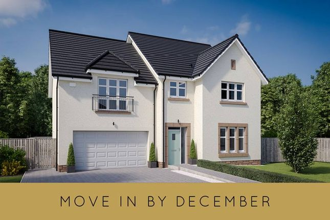 """Thumbnail Detached house for sale in """"The Garvie"""" at Cassidy Wynd, Balerno"""