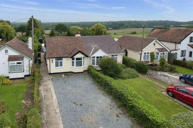 Thumbnail Semi-detached bungalow for sale in Ridgeway Road, Herne, Herne Bay, Kent