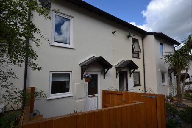 Thumbnail Terraced house to rent in Westminster Road, Exeter
