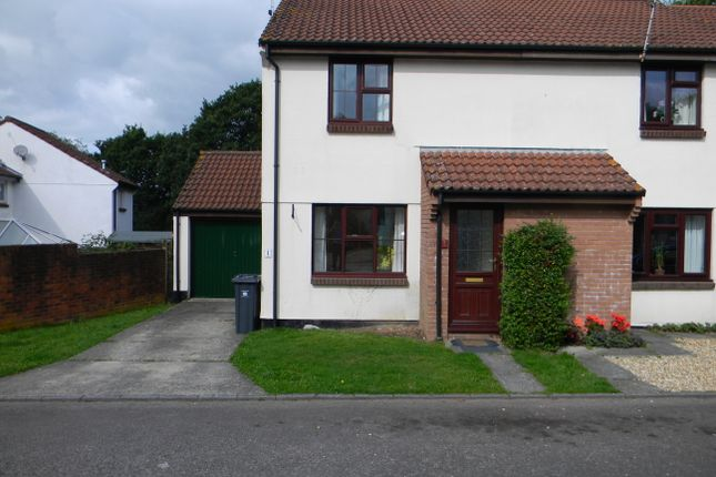 Thumbnail Semi-detached house to rent in Holly Close, Honiton