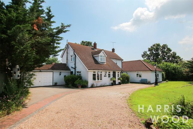 Thumbnail Detached house for sale in D'arcy Road, Tolleshunt Knights, Colchester