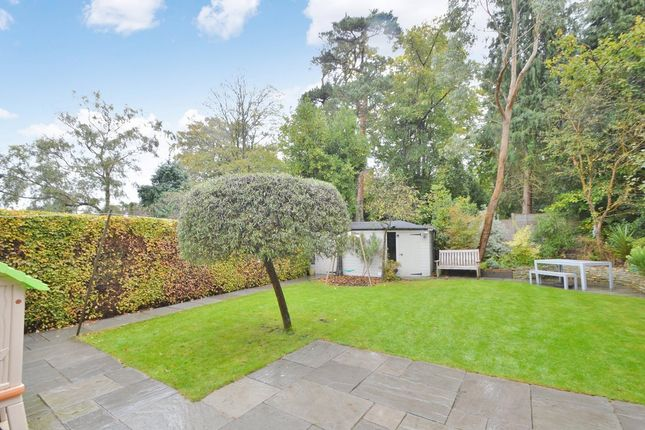 Thumbnail Detached house for sale in Bassett Row, Southampton