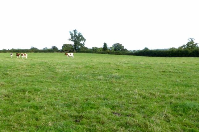 Thumbnail Land for sale in Of Land & Outbuildings, Marton, Baschurch