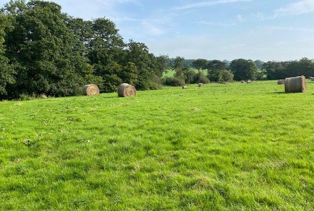 Thumbnail Land for sale in Gellideg, Glynarthen, Llandysul