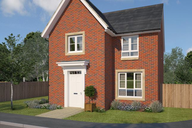 "Thumbnail Detached house for sale in ""Merchiston"" at Ravenscliff Road, Motherwell"
