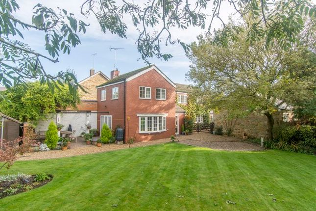 Thumbnail Detached house for sale in Malting Lane, Geddington, Kettering