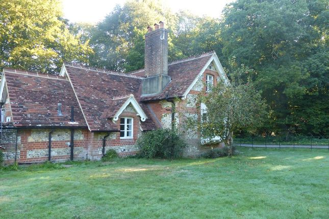Thumbnail Cottage to rent in Well Lane, Bentworth, Alton
