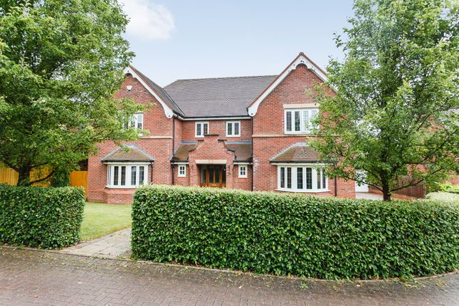 Thumbnail Detached house for sale in Kendal Way, Crewe