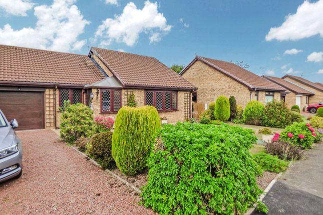 3 bed bungalow to rent in Benlaw Grove, Felton, Morpeth NE65