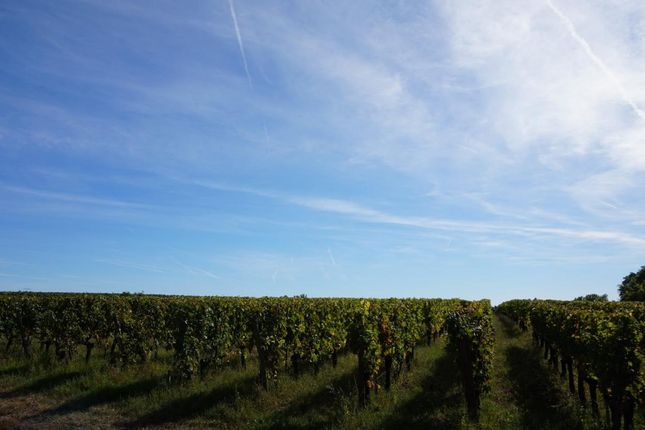 Thumbnail Property for sale in Aquitaine, Gironde, Saint Emilion