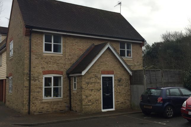 Thumbnail Link-detached house for sale in Hatcher Crescent, Colchester, Essex