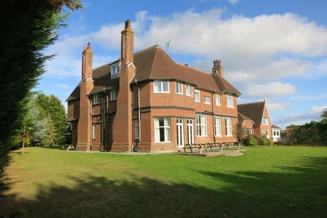 Thumbnail Detached house for sale in London Road, Rockbeare, Exeter