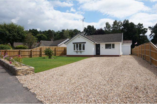Thumbnail Detached bungalow for sale in Webbs Close, Ashley Heath, Ringwood