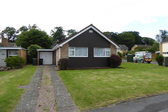 Thumbnail Bungalow to rent in Beech Drive, Shifnal