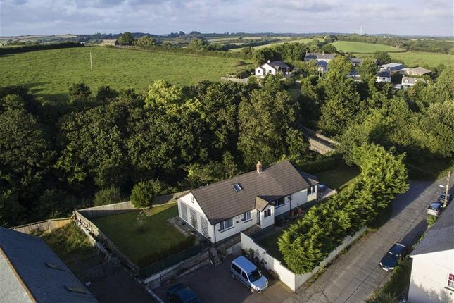 Thumbnail Detached bungalow for sale in Bridgerule, Holsworthy