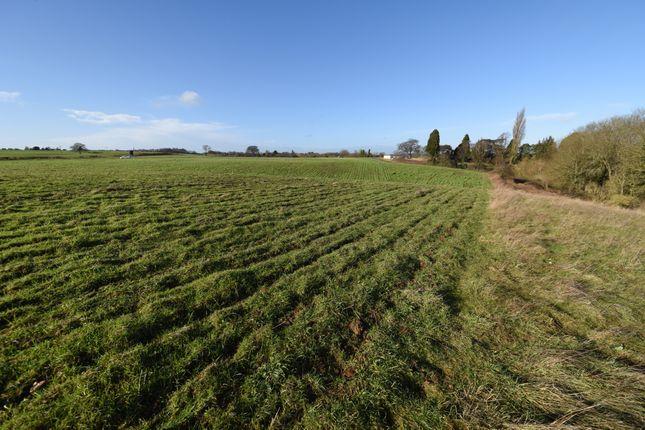 Thumbnail Farm for sale in Boughton, Northampton