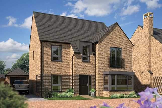 "Thumbnail Detached house for sale in ""The Birch"" at Station Road, Longstanton, Cambridge"