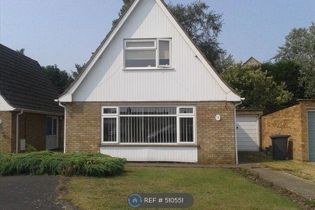 Thumbnail Detached house to rent in Thorney, Peterborough