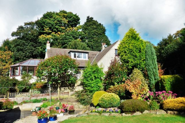 Thumbnail Detached house for sale in Whitelands Road, Baildon, Shipley