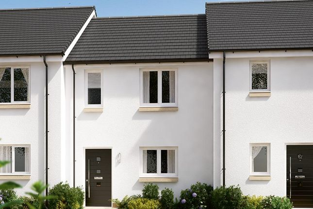"""Thumbnail Terraced house for sale in """"The Bambridge"""" at Blantyre, Glasgow"""