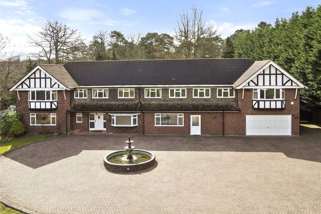 Thumbnail Detached house to rent in Forest Road, Warfield, Bracknell, Berkshire